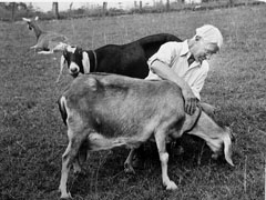Carl Sandburg and goat